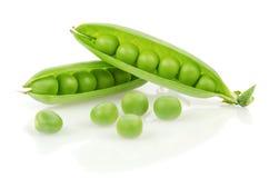 Guisantes verdes frescos Imágenes de archivo libres de regalías