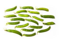 Guisantes verdes frescos foto de archivo libre de regalías