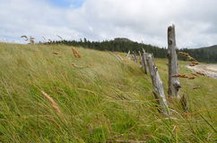 Cape Scott Provincial Park, Vancouver Island. Remnants of an Danish Farmers are all that remains of the settlement of Cape Scott on the North end of Vancouver Stock Photography