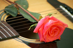 Guitar. And rose, musical image Royalty Free Stock Image