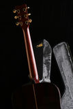 Guitar And It S Case Stock Image