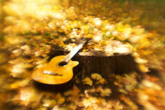 Guitar and autumn Royalty Free Stock Photos