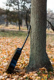 Guitar on autumn leaves Stock Photography