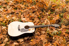 Guitar on autumn leaves Royalty Free Stock Image