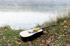 Guitar on autumn leaves Stock Images