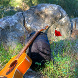 Guitar, backpack and red poppy Stock Image