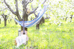 Guitar, basket, hammock, plaid and thermos in a blossoming garde Royalty Free Stock Photos