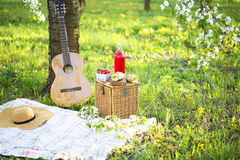 Guitar, basket, sandwiches, plaid and juice in a blossoming garden stock photo