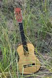 Guitar in beach grass Royalty Free Stock Photography