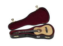 Guitar with Case Royalty Free Stock Photography