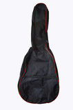 Guitar case on isolated white background stock images