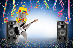 Guitar cat party. Cat with guitar in middle of confetti and streamer Royalty Free Stock Photos