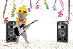 Guitar cat party. Cat with guitar in middle of confetti and streamer Stock Image