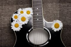 Guitar and daisy flowers Royalty Free Stock Photos