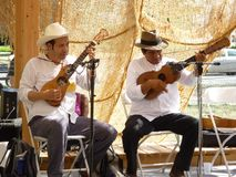 Guitar Duo Stock Photo