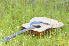 Guitar in field of wild flower Stock Photography