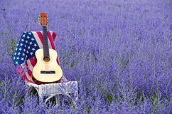 Guitar and flag in Russian sage Royalty Free Stock Images