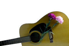 Guitar & Flower. Flower carnation and Guitar. Sound of music and beautiful of nature stock photography