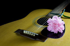 Guitar & Flower. Flower carnation and Guitar. Sound of music and beautiful of nature royalty free stock photography
