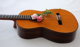 Guitar and Flowers. A classic guitar and flowers Royalty Free Stock Photos