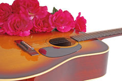 Guitar and Flowers Royalty Free Stock Images