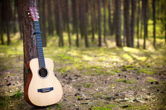 Guitar in forest Royalty Free Stock Photo