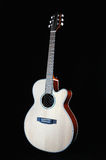 Guitar Front View Royalty Free Stock Image