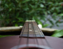 guitar in the garden Royalty Free Stock Image