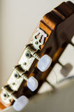 Guitar head. Tuning knobs on a guitar head Royalty Free Stock Photo