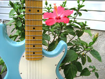 Guitar & Hibiscus royalty free stock image