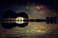 Guitar island moonlight Stock Photography