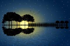 Guitar island moonlight