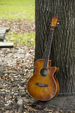 Guitar leaning on tree Stock Images