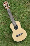 Guitar LeLe on green grass Stock Photo