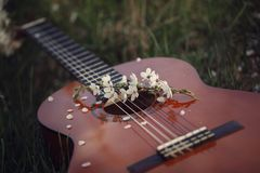 Guitar lying on grass. Concept: song of spring and love. Toning image.  stock photography