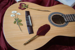 Guitar lying on red fabric, dried flowers, books on a red background Royalty Free Stock Images
