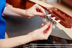 Guitar making positioning tune handles. On almost finished guitar Royalty Free Stock Images
