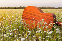 The guitar with meadow background. The acoustic guitar with meadow background stock images