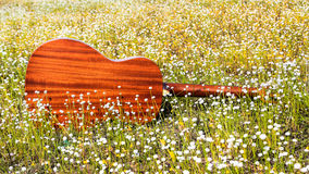 The guitar with meadow background. The acoustic guitar with meadow background stock photos