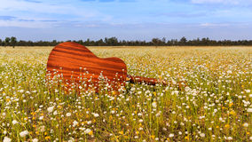 The guitar with meadow background. The acoustic guitar with meadow background royalty free stock image