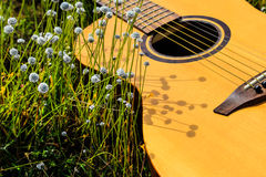 The guitar with meadow background. The acoustic guitar with meadow background royalty free stock images