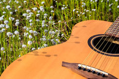 The guitar with meadow background. The acoustic guitar with meadow background stock photography