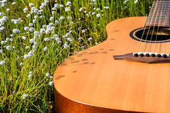 The guitar with meadow background. The acoustic guitar with meadow background stock photo