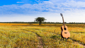 The guitar with meadow background. The acoustic guitar with meadow and blue sky background stock image