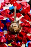 Guitar, music, roses. Musical instrument - classic guitar and other objects Stock Image