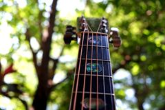 The Guitar. Guitar with nature the art of music instrument royalty free stock images