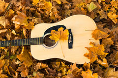 Guitar in nature Royalty Free Stock Photography