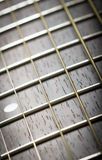 Guitar neck Royalty Free Stock Image