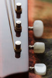 Guitar neck close-up view Stock Image