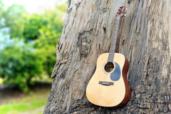 Guitar on old wood wall trunk in nature Royalty Free Stock Image